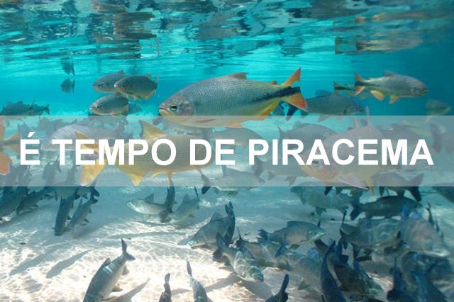 Metrô FM 87.9 - Juína - Atenção Pescadores: A Piracema Começa Hoje